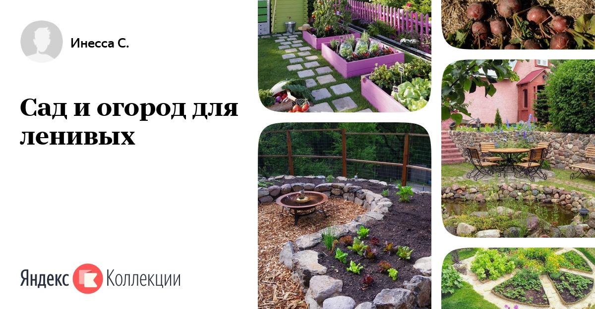 Ленивый сад и огород