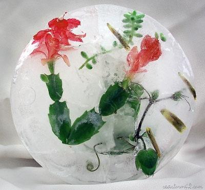 Поделка цветы. во. льду