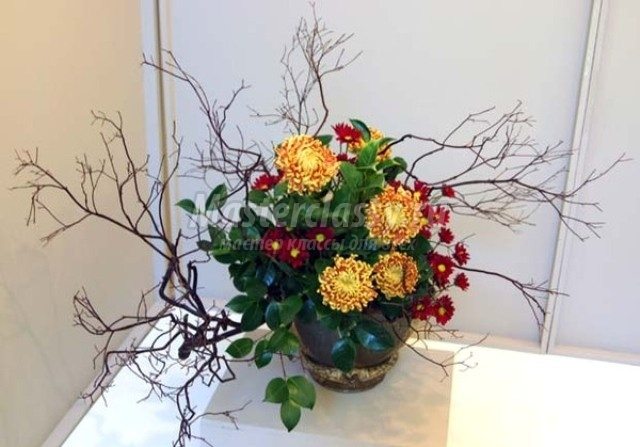 Фото экибаны из сухих цветов