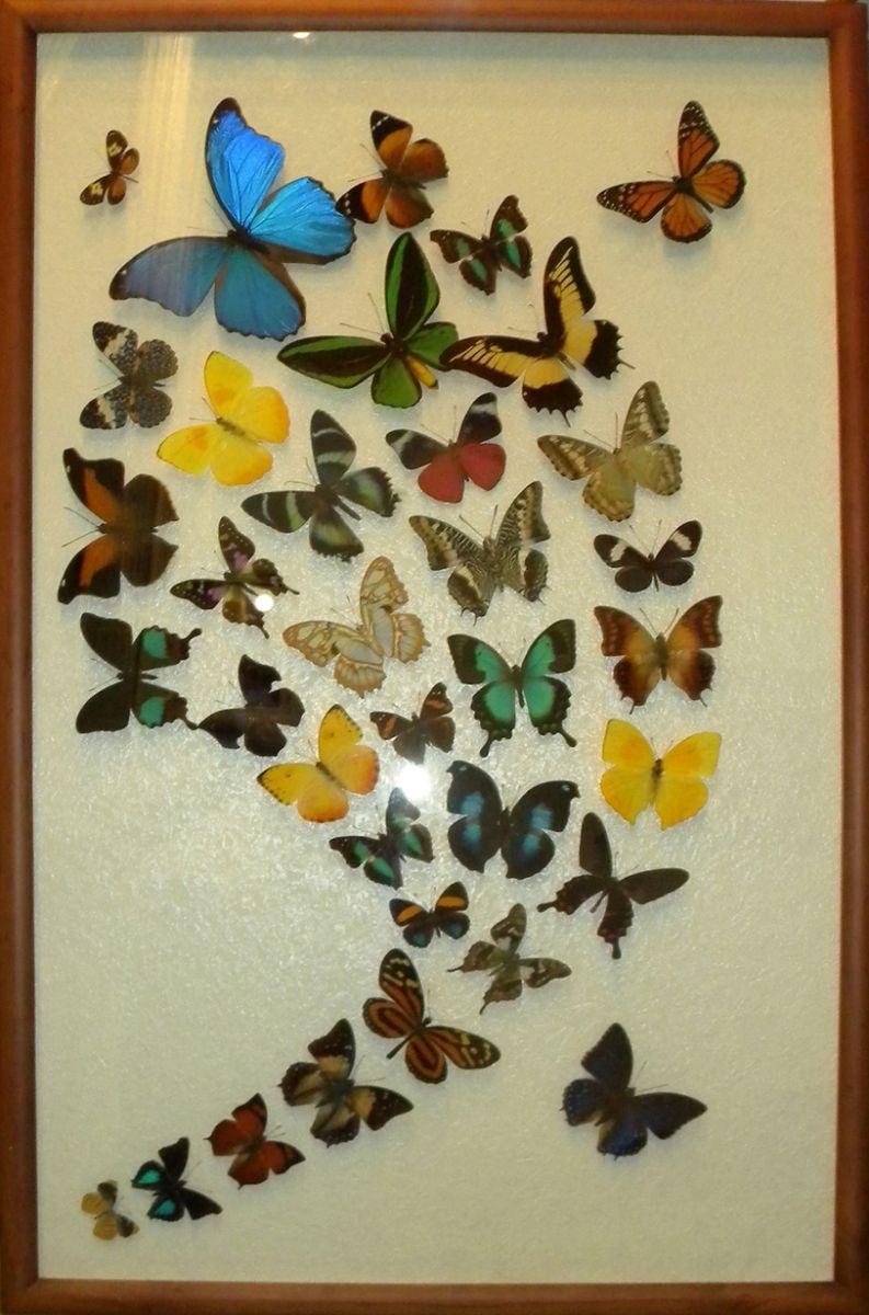Как сделать панно бабочки своими руками