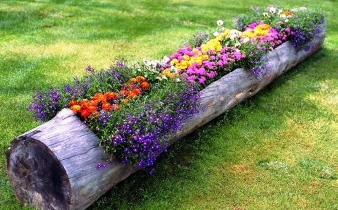 Фото дачных клумб с цветами на даче