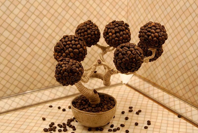 Сделать дерево из кофе своими руками