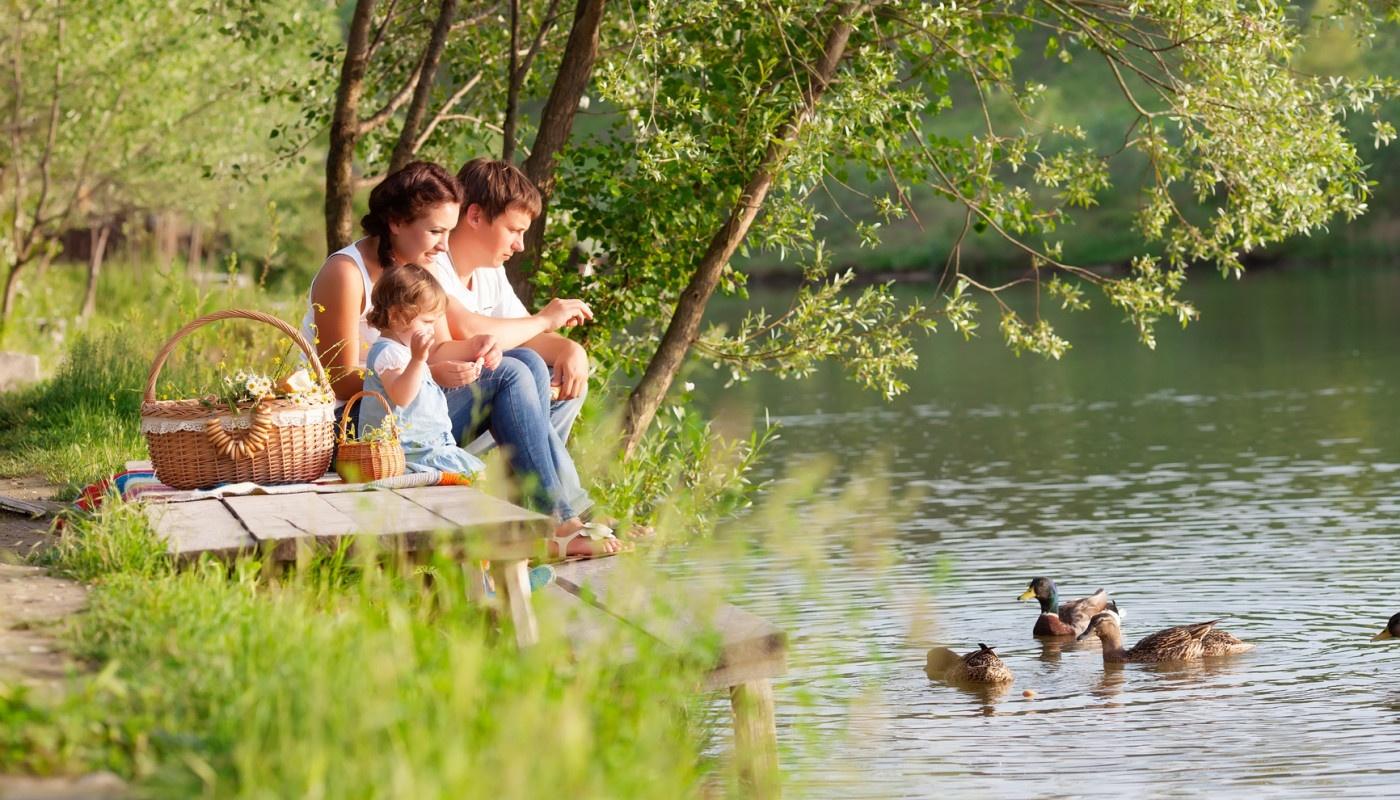 Идея для на берегу реки