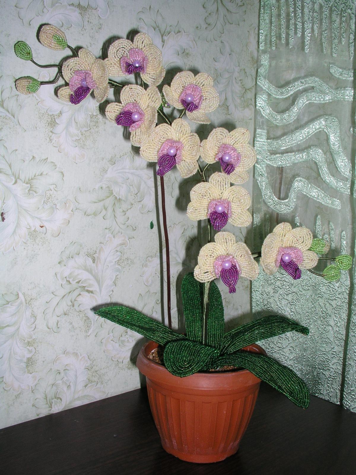 Из бисера своими руками орхидея