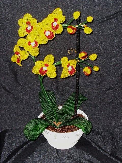 Орхидея из бисера.мастер-класс с пошаговым