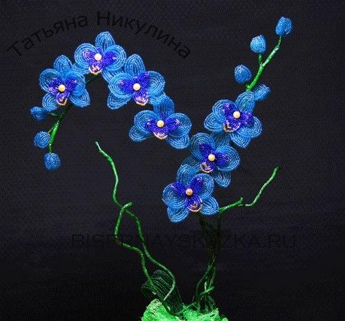 Голубая орхидея из бисера мастер класс с пошаговым фото для начинающих