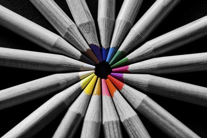 Как сделать на черно белом фото цветные элементы