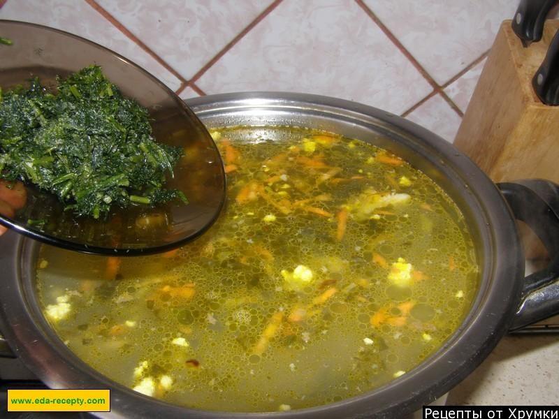 Зеленый борщ рецепт с фото пошагово