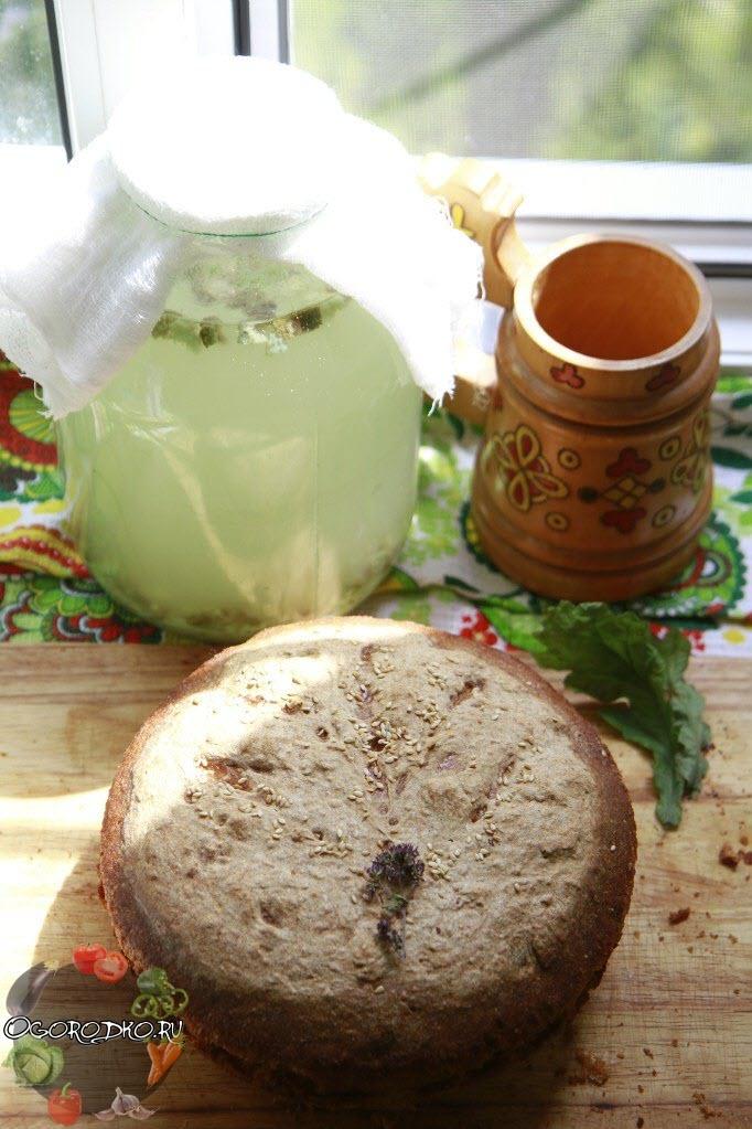Как приготовить квас на хлебе в домашних условиях