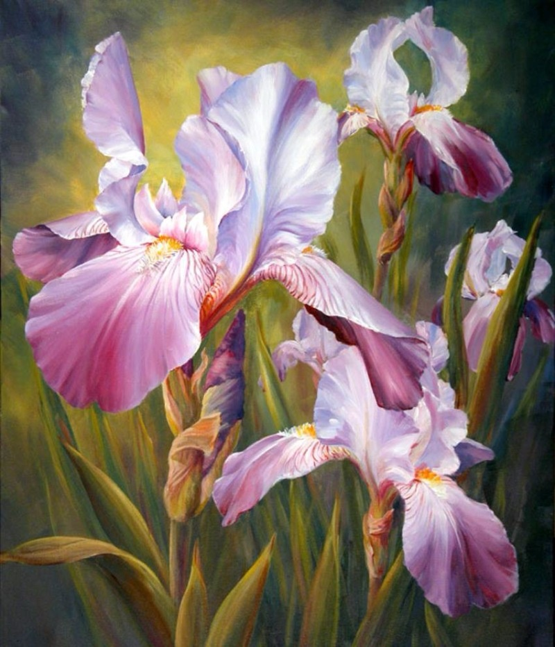 Ирисы картины цветов