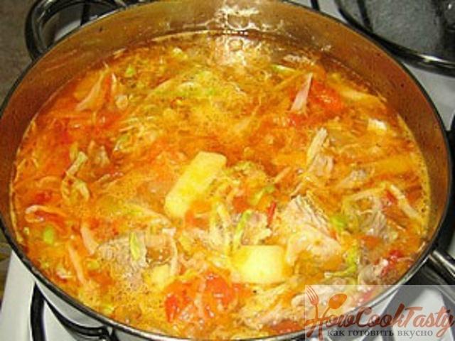 Очень вкусные щи из свежей капусты пошаговый рецепт с фото