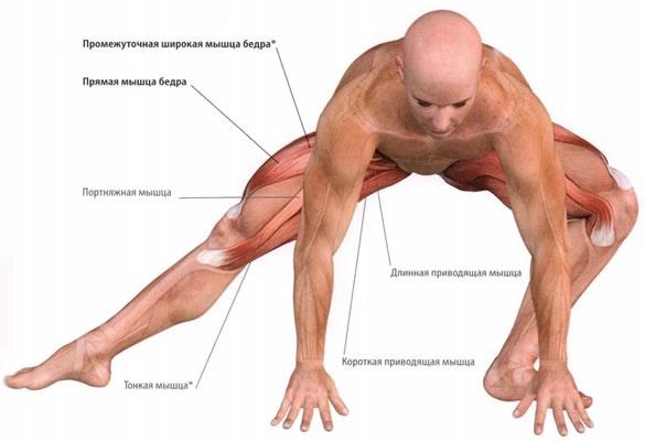 когда болят мышцы тела