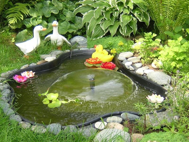 Как сделать водоём в саду своими руками фото