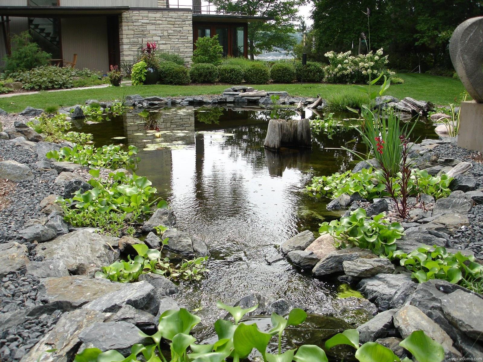 Как сделать пруд в саду