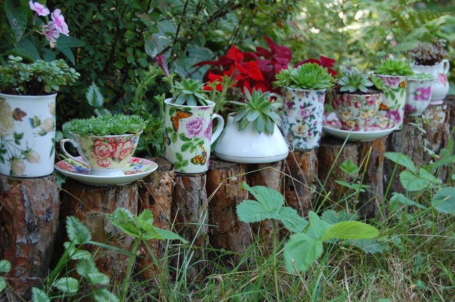 Декор растений на даче своими руками