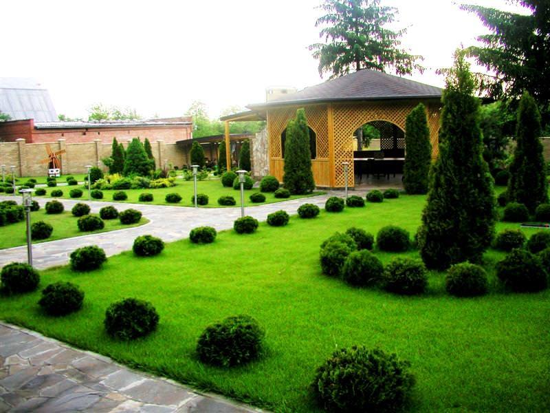 Фото дизайна двора частного дома 10 соток