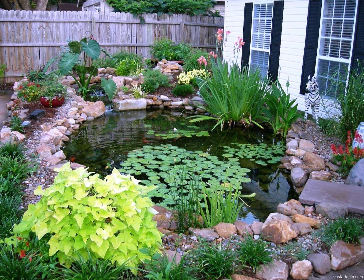 Искусственный пруд во дворе