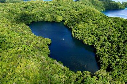 Озеро Медуз в Палау