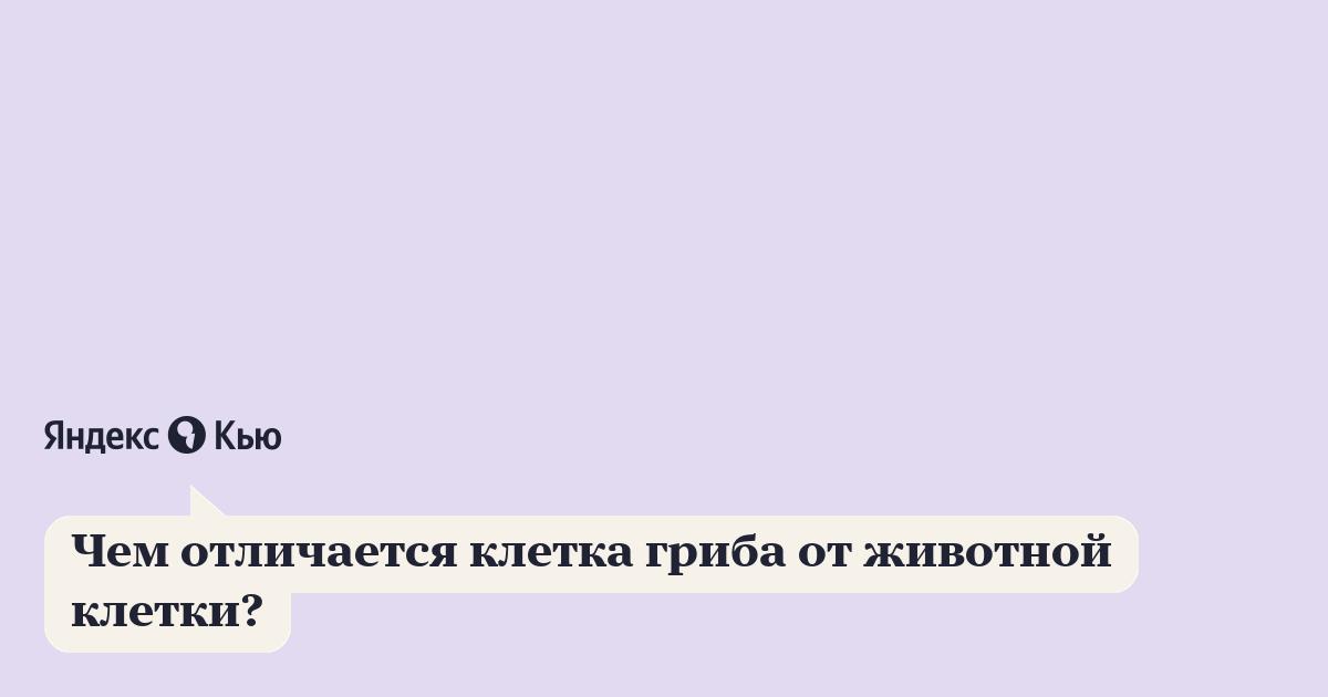 «Чем отличается клетка гриба от животной клетки?» – Яндекс.Кью  Вакуоль В Животной Клетке